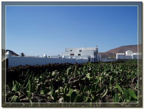 agricultura02