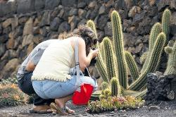 jardincactus
