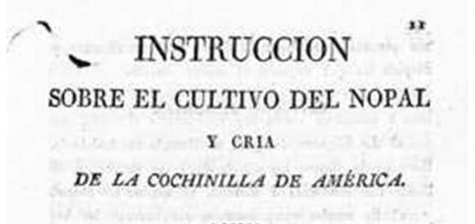 instruccionesCultivo